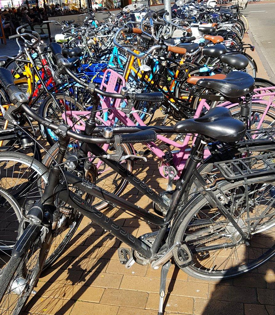 Radfahren in Groningen